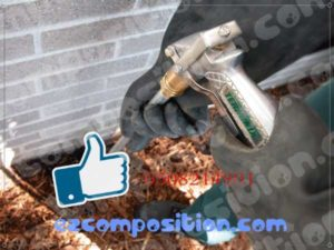 شركات مكافحة النمل الابيض