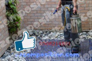 شركات مكافحة حشرات بالدمام